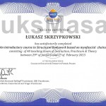 Certificate of completion of the Basic course of Structural Bodywork.