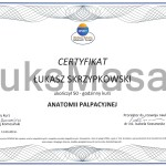 Certificate of completion of Palpation Anatomy.