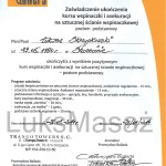 Certificate of completion of the basic course Climbing and Belaying.