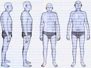 Structural Bodywork-efect2